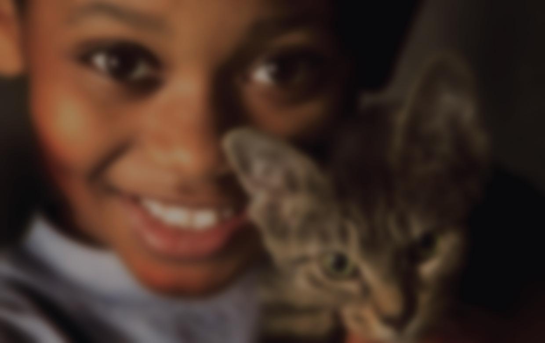 boy-kitten-blur